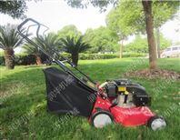 新款园林修剪高枝锯 品牌高枝锯价格 高枝锯型号