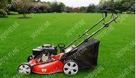 大型汽油草坪机价格 新款草坪机 修剪草坪机批发