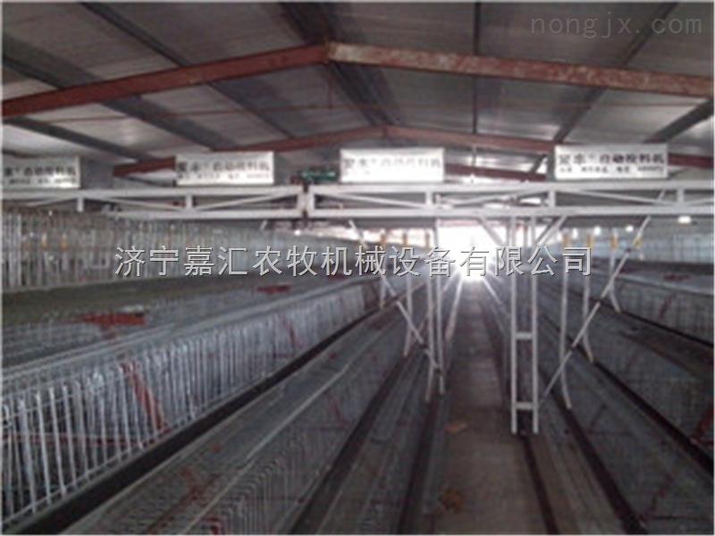 鸡笼蛋鸡笼大型养殖厂畜禽笼设备