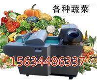 大白菜切段切片机 海带切片切丝设备 多功能青菜切段长短可调