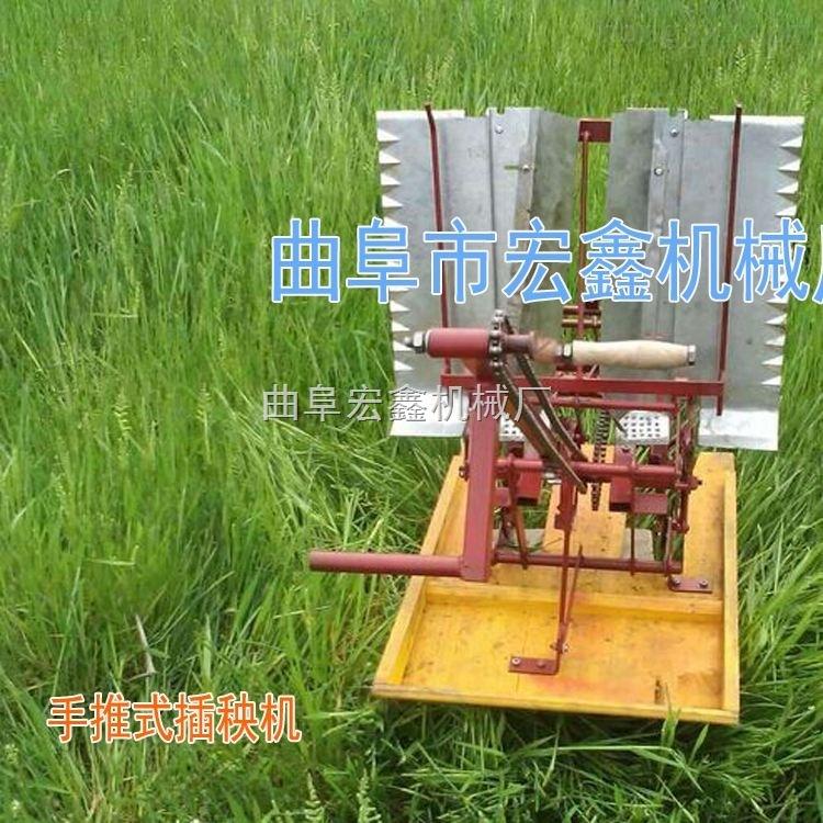 大量现货供应小型插秧机 手摇式插秧机厂家批发