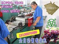 凯祥葡萄果袋机名牌产品