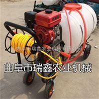 自走式果树杀虫打药机 果园喷雾机价格 汽油高压喷药机