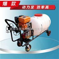 园林消毒喷雾器 小型汽油打药机 生产汽油打药机价格