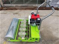 多功能蔬菜播种机 油菜播种机 胡萝卜播种机
