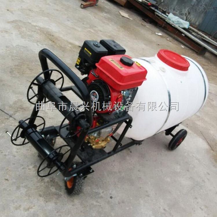 新品大型喷雾机电动喷雾器 农用烟雾机农用批发
