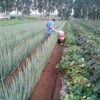 操作简单开沟培土机 大葱开沟培土机构造