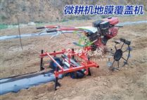 微耕机带铺膜机