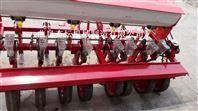 桔梗 白菜播种机 谷子草籽播种机 出苗均匀大蔬菜精播机