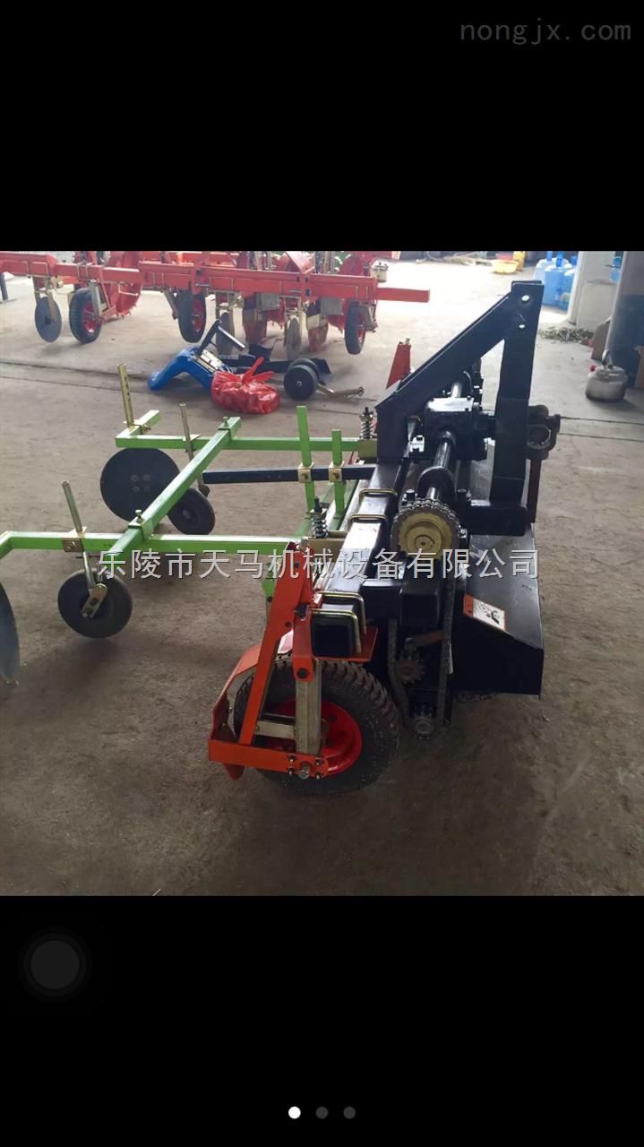 2zq-2辣椒移栽机的生产价格与介绍