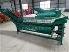 STB-4地瓜清洗机厂家洗地瓜机器图片