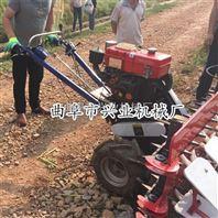 水稻收割机柴油自走式割晒机工作视频