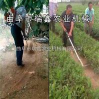 果园除草旋耕机 玉米地松土除草机视频 背负式割草松土机
