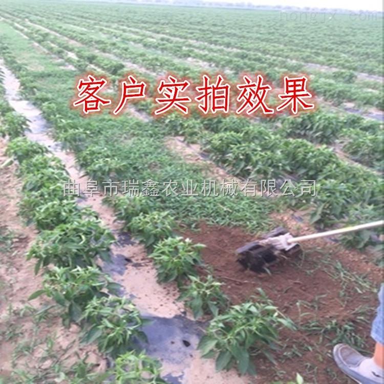 小型農田除草機 新款農田鋤地機 本田汽油背負式除草機價格