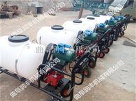 远程高压喷雾机 农药灭虫喷雾器 带柱塞泵的喷雾器