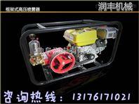 多个喷头打药喷雾器 樱桃树灭虫喷雾器 高压打药机