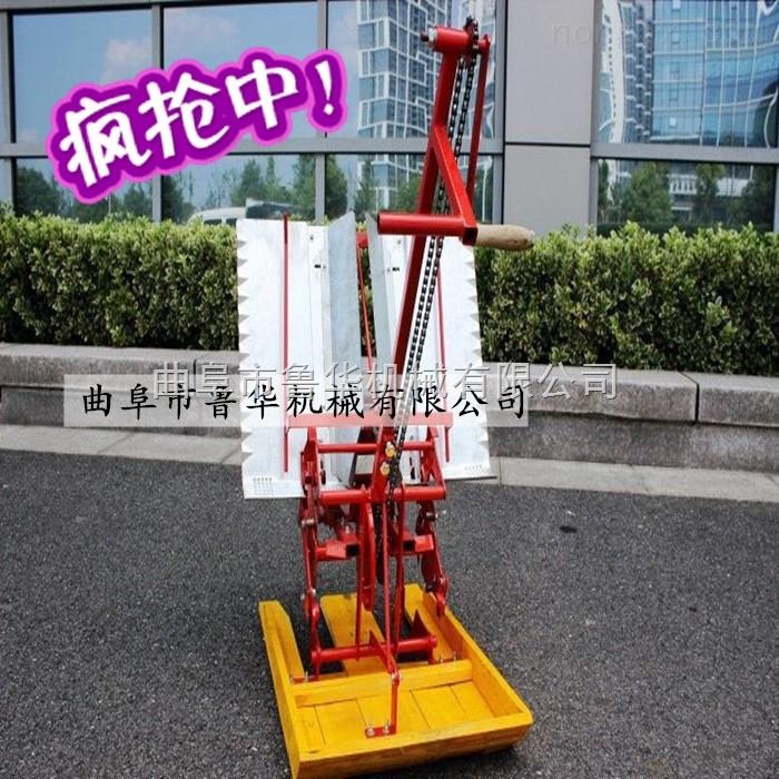 小型水稻插秧机 手摇式两行插秧机 插秧机价格