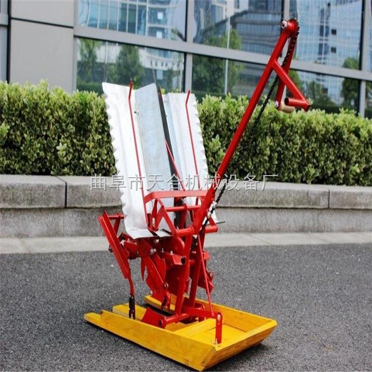 水稻种植专用插秧机 手动插秧机 大米小麦种植机械