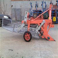 土豆收获机 手扶带动60/70/80厘米割幅宽度收获机报价