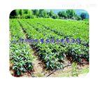 多种陕西蔬菜滴灌设备 滴水带管件规格全