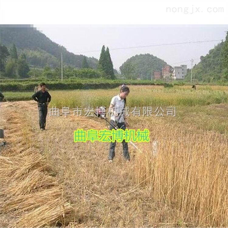 小型輕便割草機  大功率割草機  背負式軟管割草機