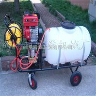 拉管式农用汽油喷雾器 QF供应畜牧防疫喷雾机
