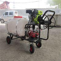 大功率手推式喷雾机 高压拉管汽油喷雾器