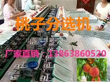 XGJ-T凯祥桃子分选机-水果分级机-高品质分选机