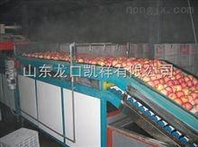 FXX-GDL苹果清洗打蜡机