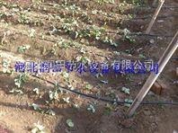 北京大棚蔬菜滴灌设备专用滴灌管|厂家价