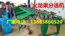 XGJ-SZZ广西火龙果分选机---红心火龙果选果机---全自动火龙果分选设备