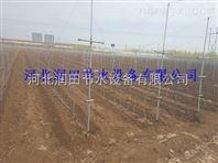 物超所值滴灌带厂家价格 山西温室滴灌技术含量高