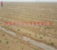 精密滴灌带设备 陕西喷灌带供应商