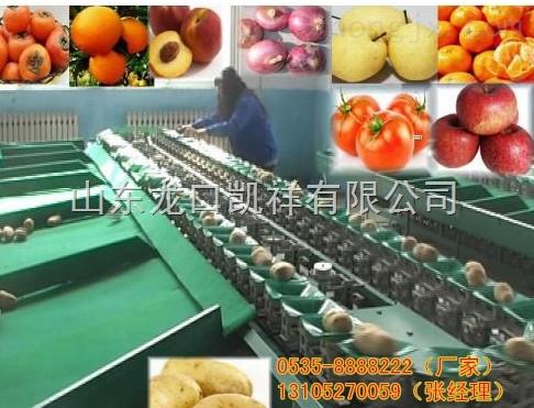 XGJ-PG-供应智能化苹果选果机,辽宁哪有卖电子苹果选果机的,苹果大小分选机