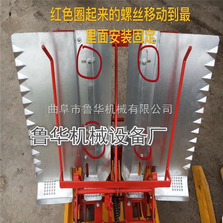 小型插秧機廠家水稻插秧機 微型手動手壓式插秧機