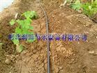 多种重庆大田滴灌设备 滴灌管优势