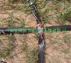 多种斜五孔塑料微喷带价格 山西蔬菜灌溉喷灌带