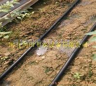 安徽滴灌厂家服务优 无为县滴灌带科学灌溉应用