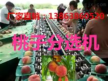 XGJ-T江苏水蜜桃挑果机新报价