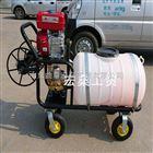 果园汽油打药机 高压式手推喷雾器