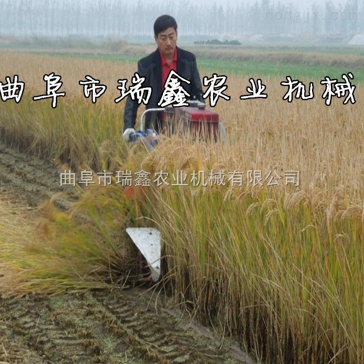 高效率玉米秸秆割晒机 小型玉米秸秆收获机厂家