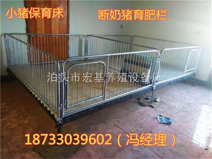 养猪设备厂家直销小猪保育床双体保育栏铸铁床