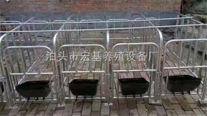 出售母猪单体栏保胎限位栏养猪设备生产厂家直销