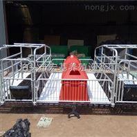 大理母猪产床双体产猪床养猪设备厂家大量现货低价促销