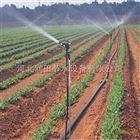 齐全江西出售节水大喷头用具 上饶市广泛应用大田喷灌技术