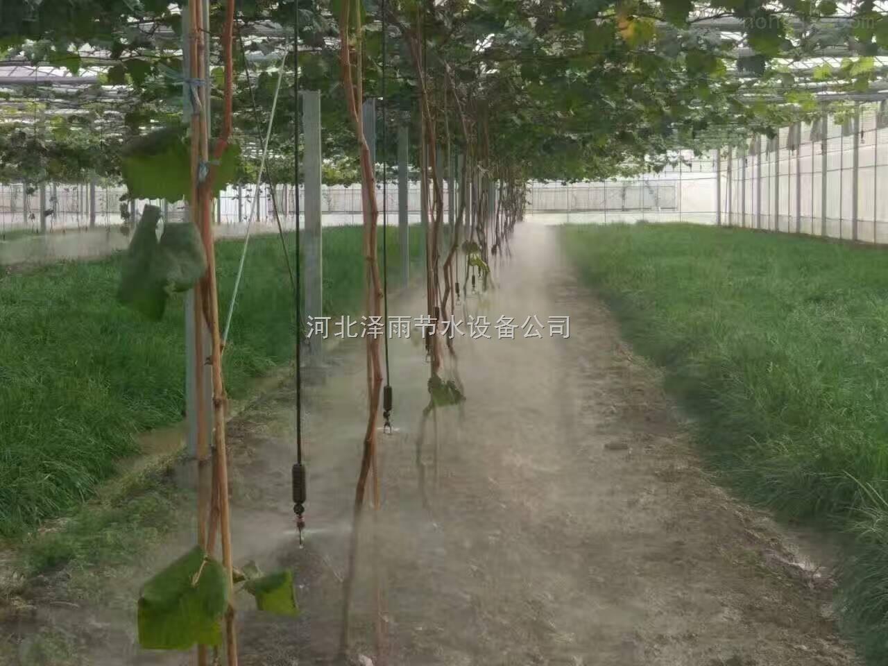 津市市进口大棚滴灌管农用滴灌带湖南省加厚果树滴灌管材厂家