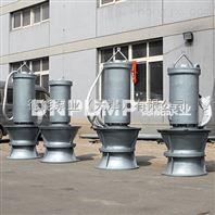 泵站污水站大型排水泵/潜水轴流泵
