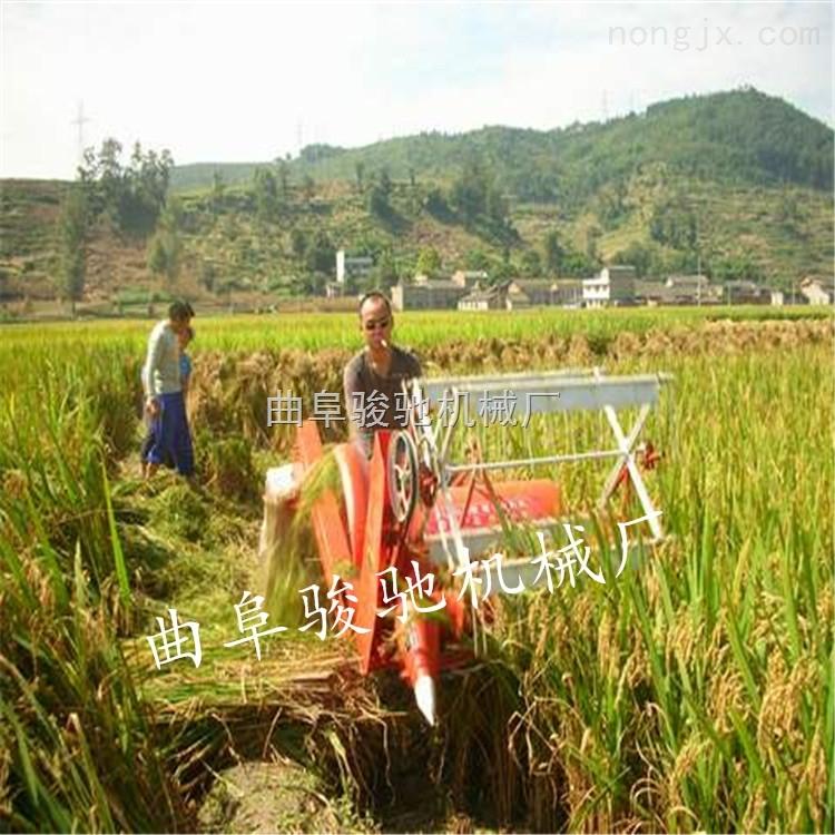 水稻收割脱粒一体机多少钱
