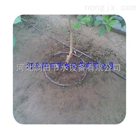 河南果树滴灌技术优势明显 开封小管出流实力厂家批发
