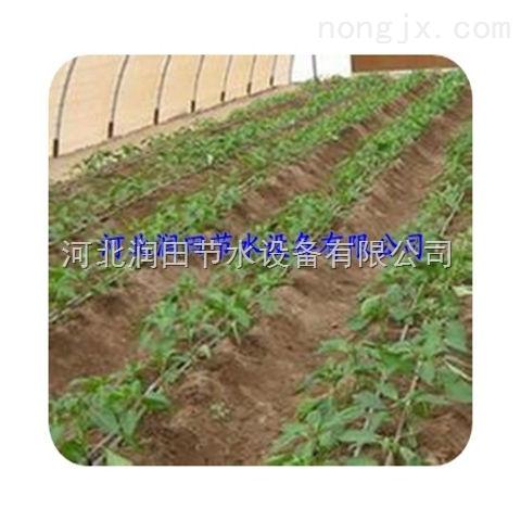 邢台市滴灌带节水省时灌溉 河北膜下滴灌设备全